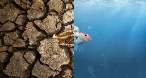 Mudança climática, ainda faltam ações