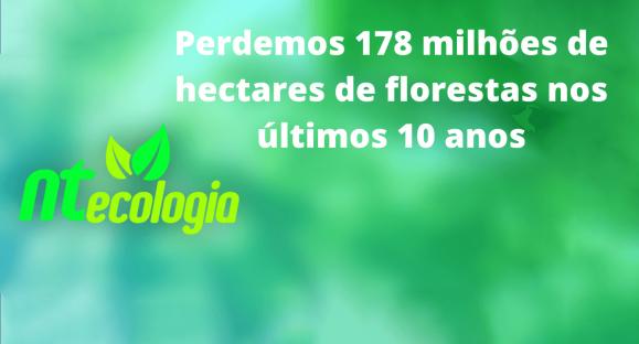 Perdemos 178 milhões de hectares de florestas nos últimos 10 anos