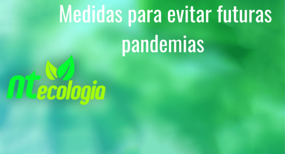 Medidas para evitar futuras pandemias