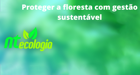 Proteger a floresta com gestão sustentável
