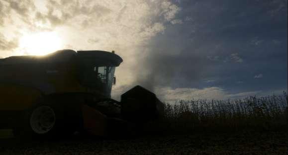 Tempo seco permite colheita da soja sem interrupções no RS