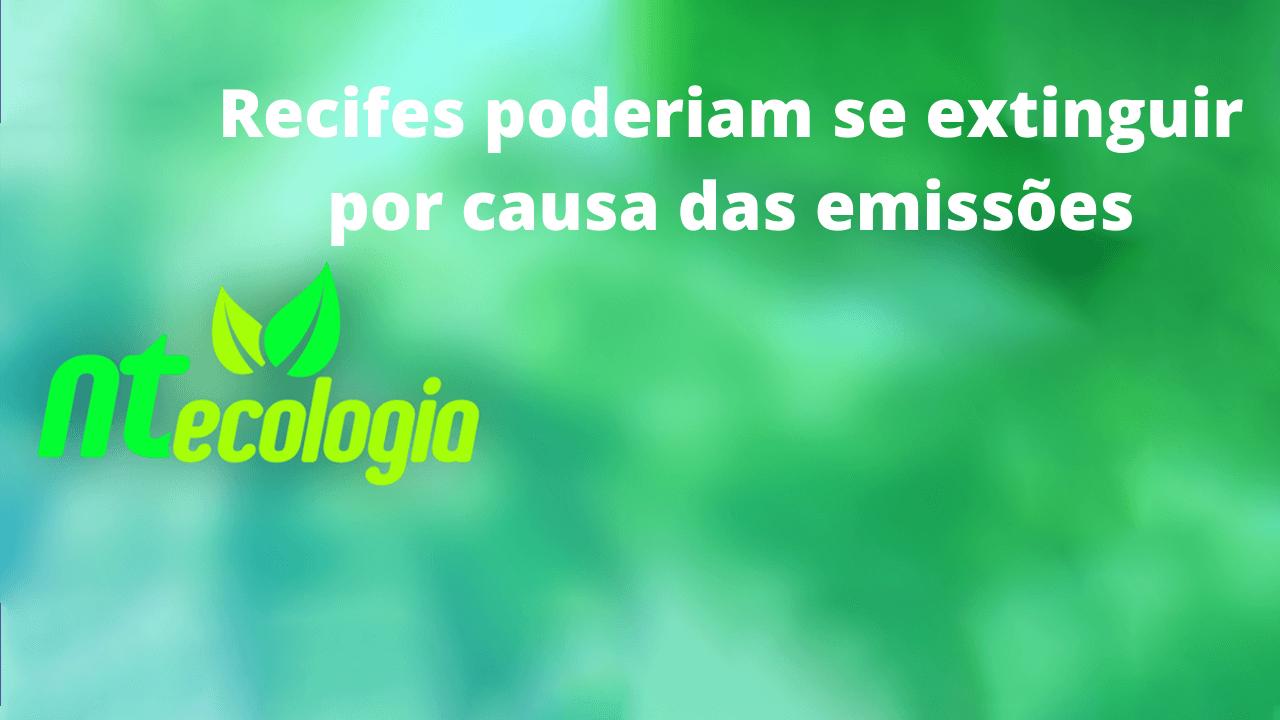 Recifes poderiam se extinguir por causa das emissões