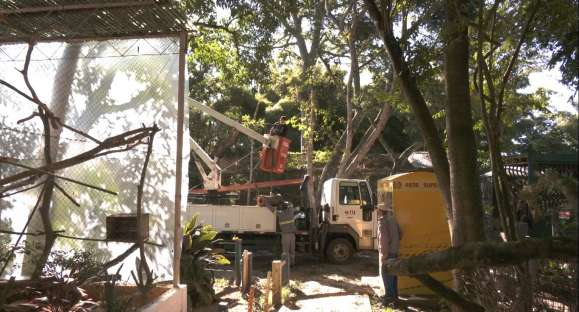 Zoológico de Cachoeira tem novidades para a reabertura